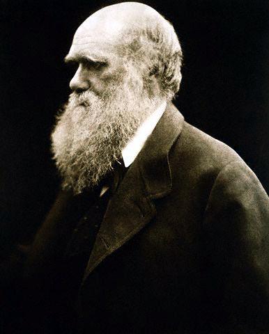 Charles_Darwin_1869_Cameron