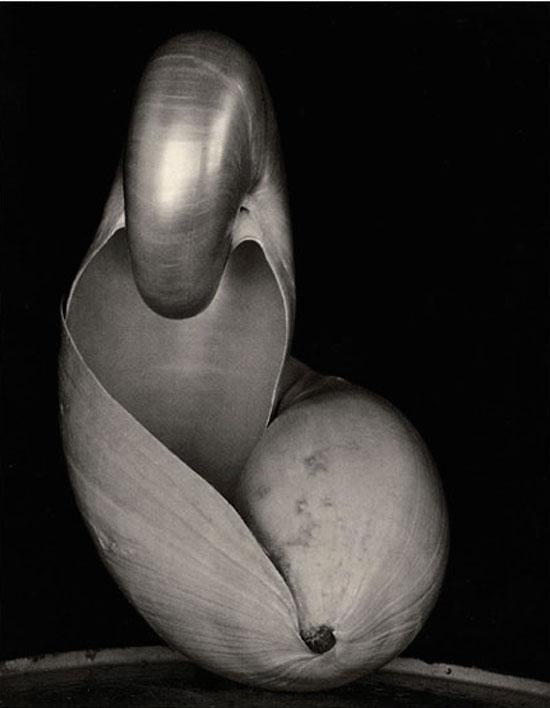 EW_Shell_1927