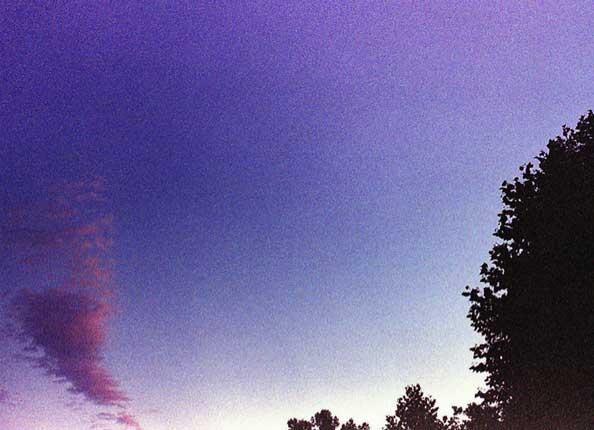 Brock_Purple_SkyC