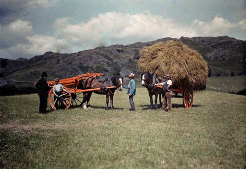 HayWagons