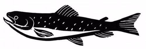 PG_trout